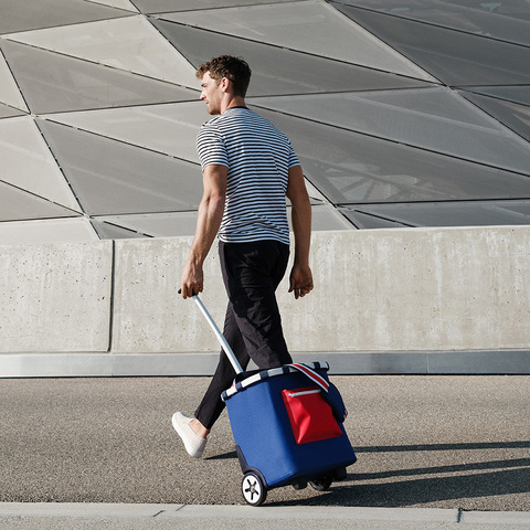 Сумка-тележка Carrycruiser special edition nautic