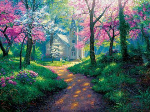 Картина раскраска по номерам 40x50 Дорога к дому через розовые деревья