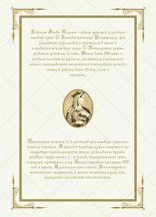 Практикум по переводу с русского языка. Уровни В2 – С2. Книга 5. Оборот обложки