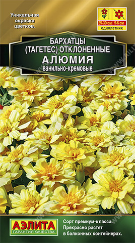 Бархатцы Алюмия ванильно-кремовые тип ц/п