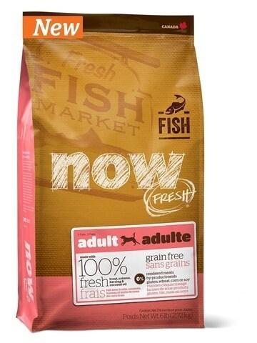 купить Now Fish adult large breed recipe grain free DF сухой беззерновой корм для взрослых собак при чувствительном пищеварении с форелью и лососем
