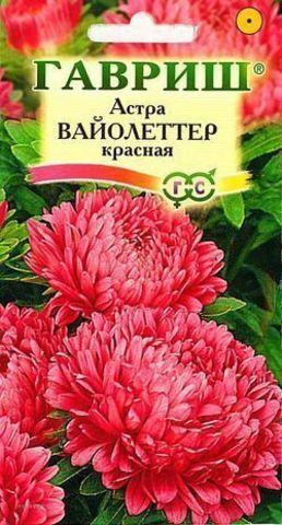 Семена Астра Вайолеттер красная пионовидная Вайолеттер красная пионовидная