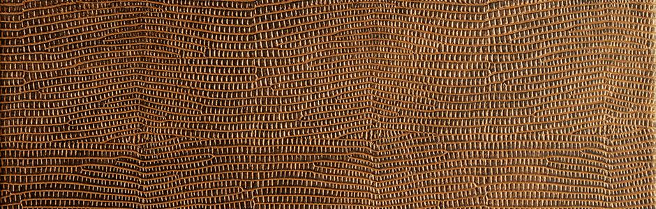 12894 Leguan Copper