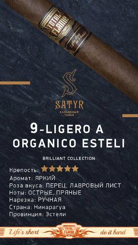 Табак Satyr Ligero A Organico Esteli 100г