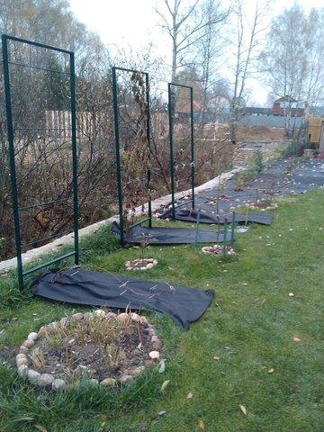 Зимнее укрытие для винограда Зимний домик