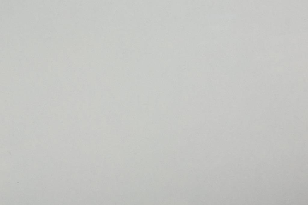 Белый 1110/SО