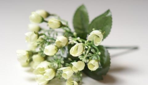 Мелкоцвет белый с зеленой серединой, зелень флористическая