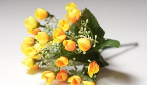 Мелкоцвет желтый, зелень флористическая