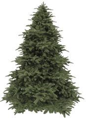 Triumph tree ель Нормандия темно-зеленая 1,55 м