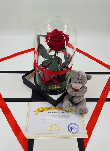 Комплект подарочный Premium Оптом (Выс*Диам*Бутон 27*15*7-8см)Цвет красная
