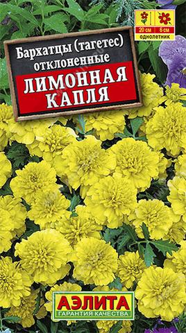 Бархатцы Лимонная капля отклоненные тип ц/п