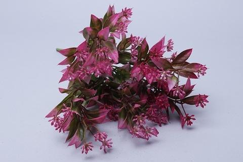 Мелкоцвет малиновый, зелень флористическая