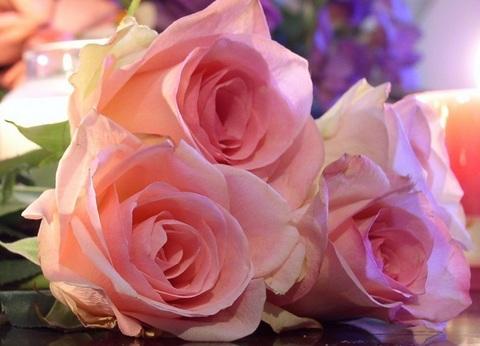 Алмазная Мозаика 30x40 Розы на столе (арт. S3309)