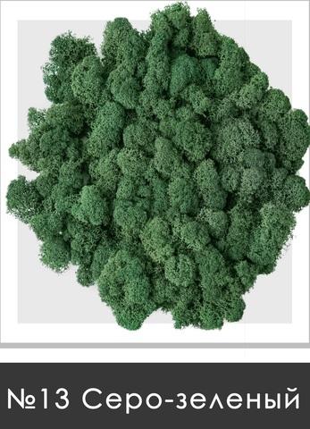 Стабилизированный мох (ягель) цвет №13 Серо зеленый