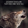 James Taylor / Never Die Young (LP)