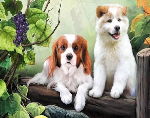Алмазная Мозаика 40x50 Два щенка и виноград