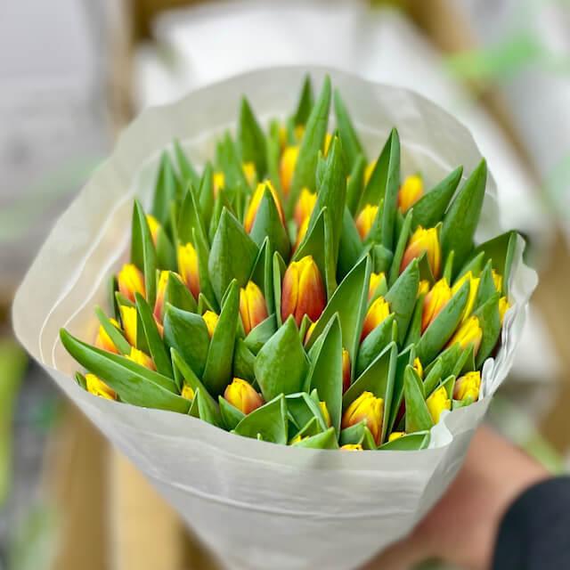 Охапка тюльпанов №3