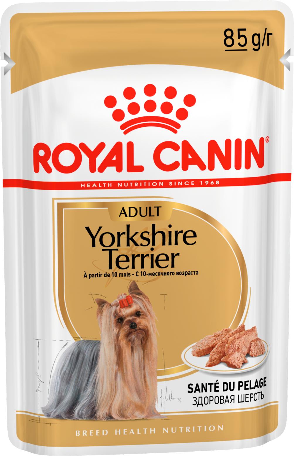 Влажные корма Паштет для взрослых собак породы йоркширский терьер, Royal Canin Yorkshire Terrier Adult 140012.png