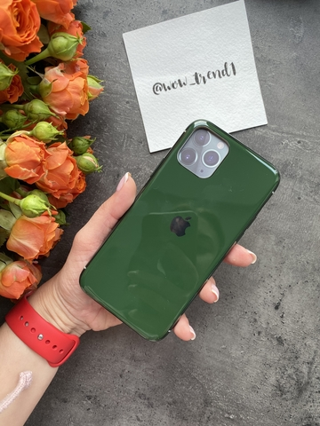 Чехол Iphone 11 Pro Glass Silicone Case Logo /green/