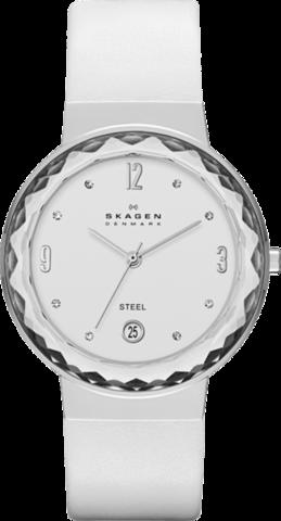 Купить Наручные часы Skagen SKW2003 по доступной цене