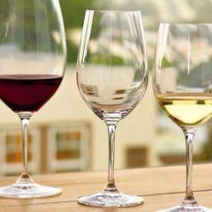 Набор бокалов для вина Riedel, Riesling Grand Cru, 4 шт, 400 мл, фото 5