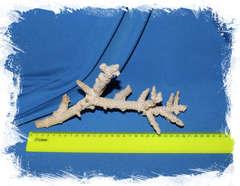 Ветка коралла крупная 25 см.