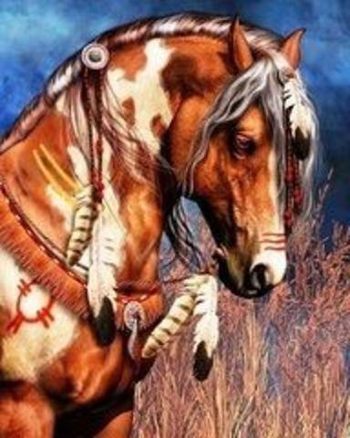 Алмазная Мозаика 40x50 Лошадь индейцев