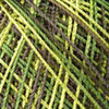 Пряжа YarnArt Tulip 477 (Св.желтый,салат,кофейный)