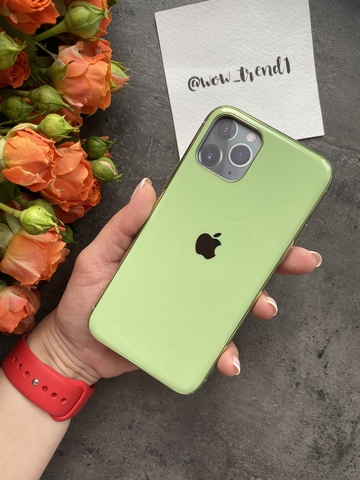 Чехол Iphone 11 Pro Glass Silicone Case Logo /mint gum/