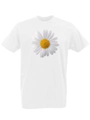 Футболка с принтом Цветы (Ромашки) белая 0002
