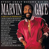 Marvin Gaye / Every Great Motown Hit Of Marvin Gaye - 15 Spectacular Performances (LP)