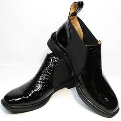 Кожаные ботинки ботильоны женские Ari Andano 721-2 Black Snake.