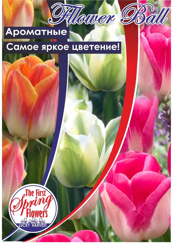Тюльпан Фловер Бал (Смесь сортов)