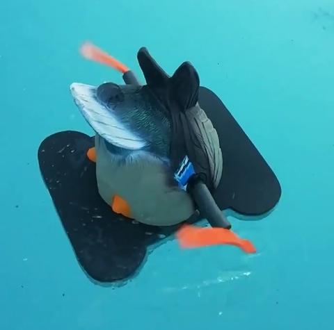 Чучело кормящейся утки Lucky Duck Dabbler HD