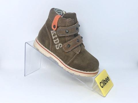 Clibee F572 Brown 20-25