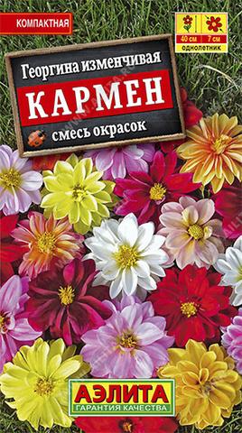 Георгина Кармен, смесь окрасок тип ц/п