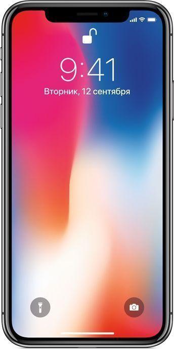 Apple iPhone X 256GB Space Gray (Ростест)