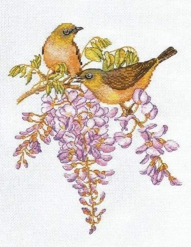 Птички-невелички. Белоглазки