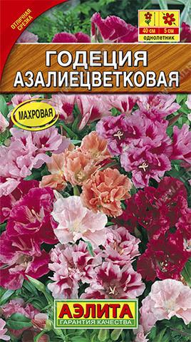 Годеция азалиецветковая махровая, смесь окрасок тип ц/п