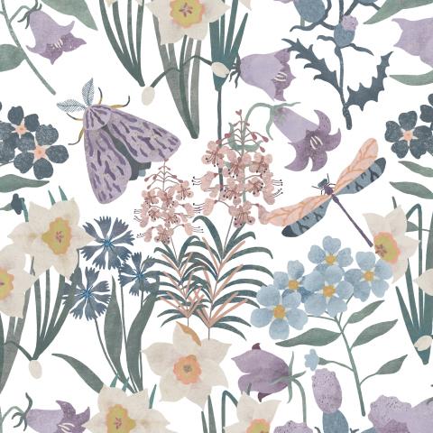 Полевые цветы, мотылёк, стрекоза