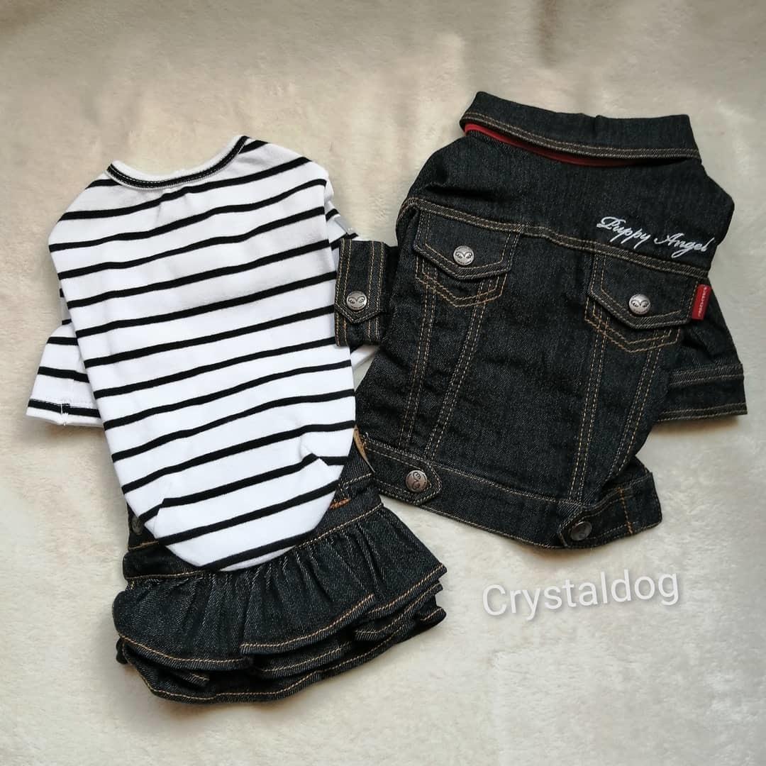джинсовая одежда для чихуахуа