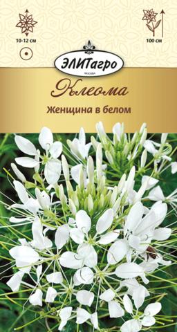Семена Клеома Женщина в белом, одн