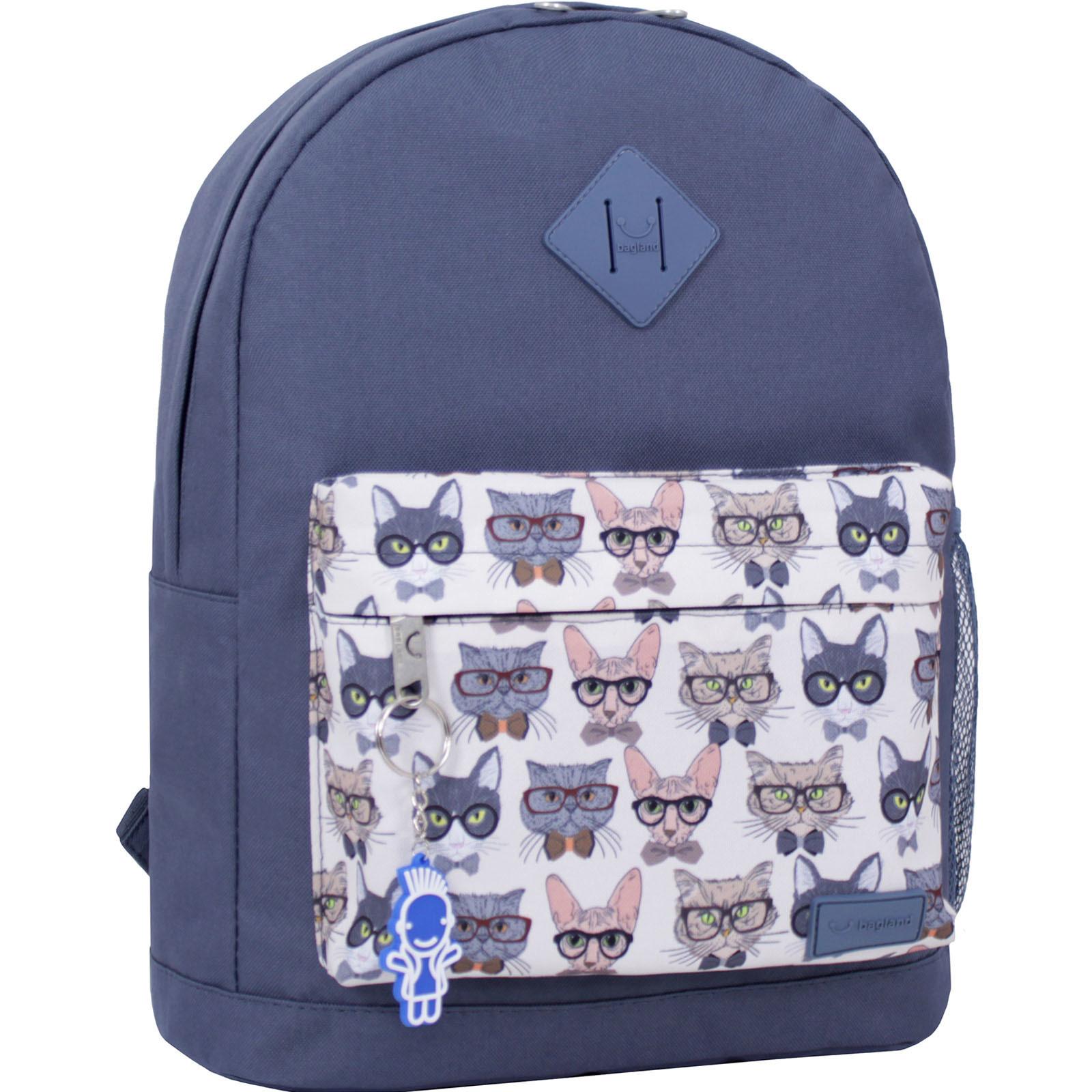 Городские рюкзаки Рюкзак Bagland Молодежный W/R 17 л. 321 сірий 28 (00533662) IMG_2133__суб.28_.JPG