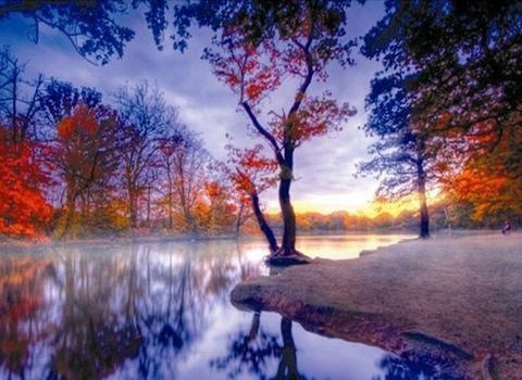 Алмазная Мозаика 40x50 Таинственное озеро (арт. TC3623 )