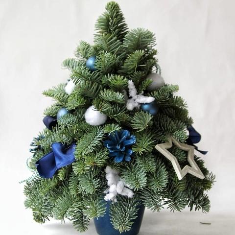 Фотография Елочка-мини синяя 30 см купить в магазине Афлора