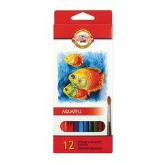 Набор школьных акварельных карандашей FISH 12 цветов в картонной коробке