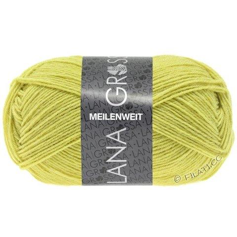 Lana Grossa Meilenweit Uni 50 (1378) купить