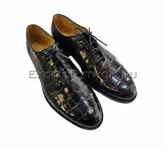Ботинки из кожи крокодила SH-103