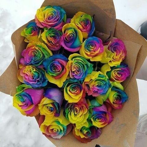 21 Радужная роза в оформлении #2767