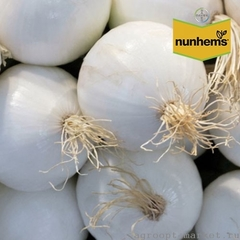 Комета F1 семена лука репчатого (Nunhems / Нюнемс)
